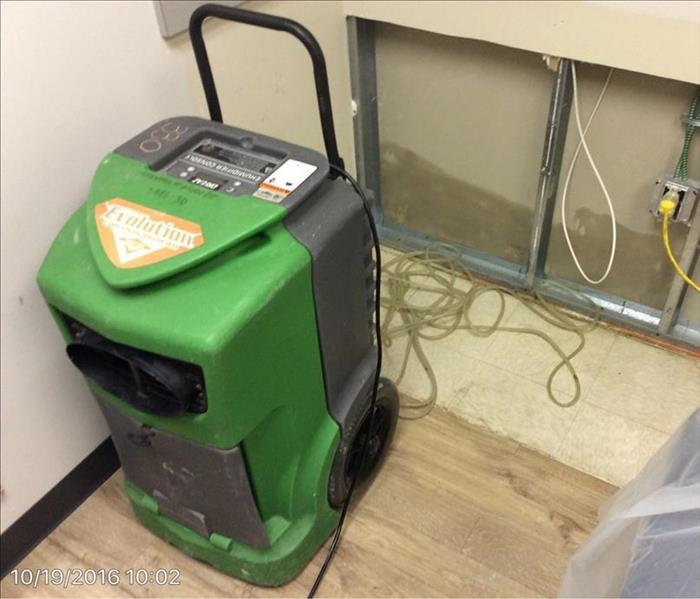 Commercial Mold Remediation After
