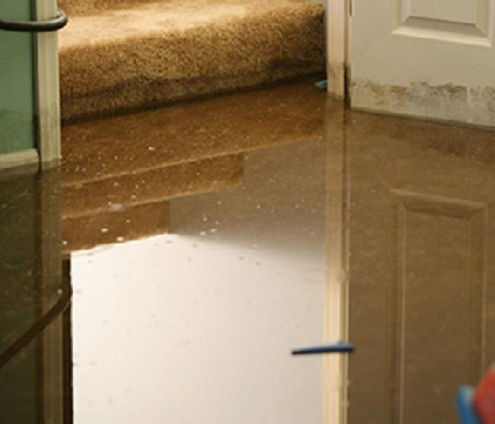 Water Damage Annapolis Residents: We Specialize in Flooded Basement Cleanup and Restoration!