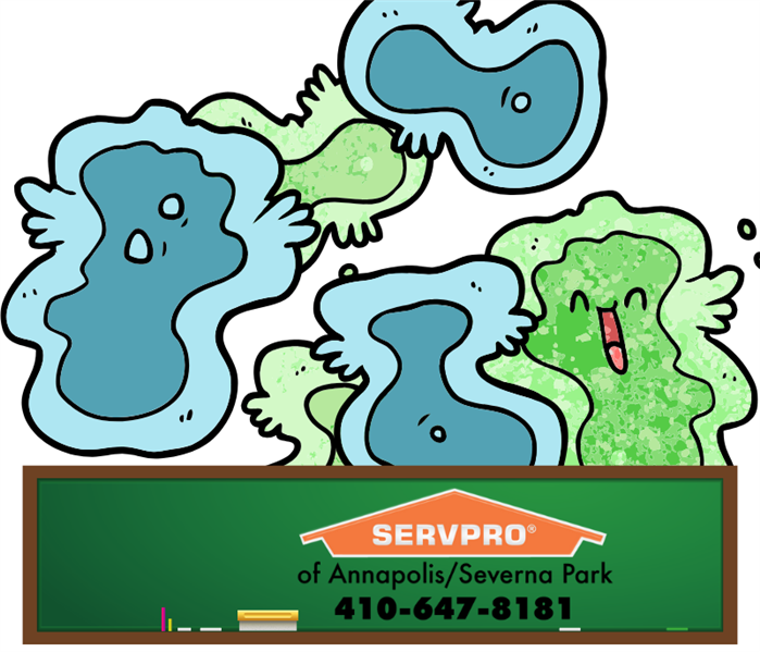 virus bacteria with servpro phone number on chalkboard