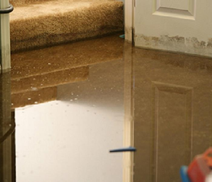 Storm Damage Anne Arundel County Residents: We Specialize in Flooded Basement Cleanup and Restoration!